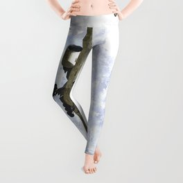Star Alliance Boeing 777 Art Leggings