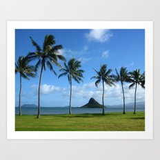 Chinaman's Hat Art Print