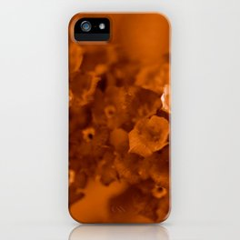 Lantana Sepia iPhone Case