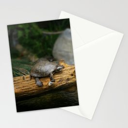 Turtle on a Log Stationery Cards