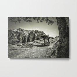 walking in the Alps Metal Print