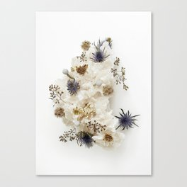 Dead flowers on coral Canvas Print