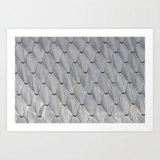 Scaled 2 Art Print