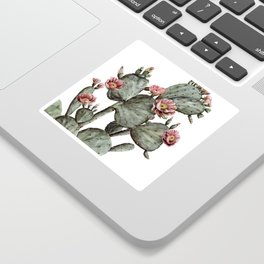 Prickly Pear Cactus Painting Sticker
