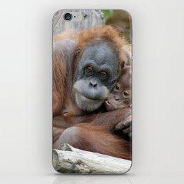 Orang Utan 008 iPhone Skin
