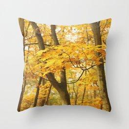 Autumn Silver Birch Trees Throw Pillow
