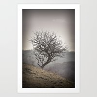 Winter tree #3 Art Print