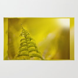 Dryopteris called wood fern leaf and sunbeam Rug