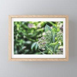 The Finer Things Framed Mini Art Print