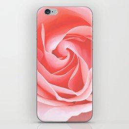 Velvet pink rose - Roses Flowers Flower iPhone Skin