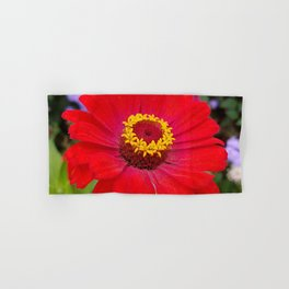 Red zinnia - blazing ring of fire Hand & Bath Towel