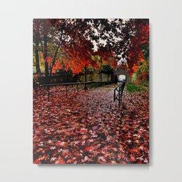 new england autumn Metal Print