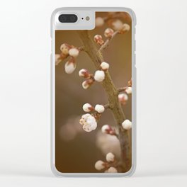 late sun blossoms Clear iPhone Case