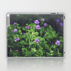 Purple Blossoms Laptop & iPad Skin