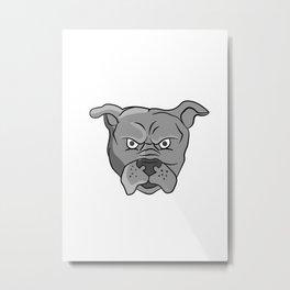 Angry Bulldog Head Cartoon Metal Print