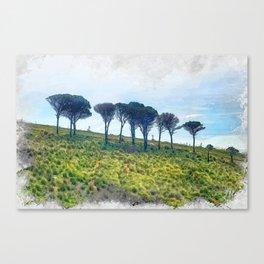 Trapani art 13 Sicily Canvas Print