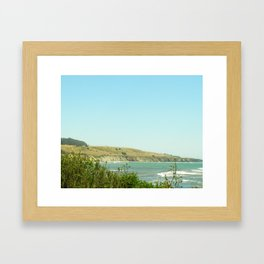 California Coast Floral II Framed Art Print