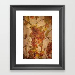 The most noble and challenging of fruits Framed Art Print