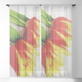 Two Tulips Sheer Curtain
