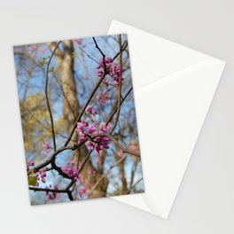 Into Spring Stationery Cards