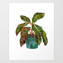 Eternal Houseplant Art Print