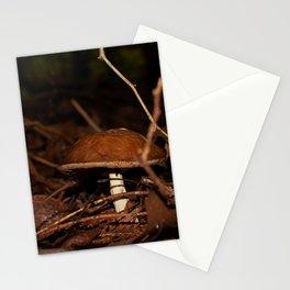 Chestnut Bolete Stationery Cards