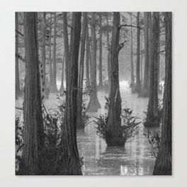 Adams Mill Pond 50 B&W Canvas Print