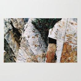 Rock Face Near Windamere Dam Rug