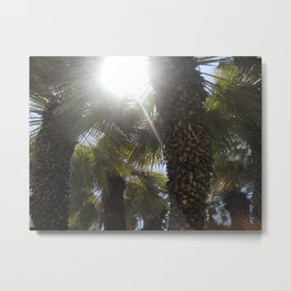 Palm Trees Perspective Metal Print