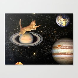 Cat.In.Space. Canvas Print