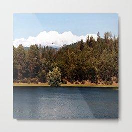Ewing Reservoir in the Spring Metal Print