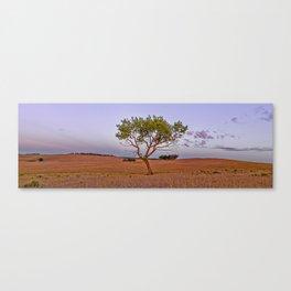 Zion Mountain Ranch Sunrise Canvas Print