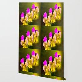 Colorful violets  - beauties of nature - #Society6 - #Buyart Wallpaper