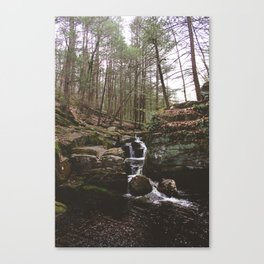 Enders Falls I Canvas Print
