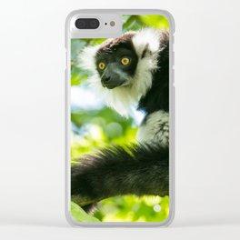 Black-and-white Ruffed Lemur Clear iPhone Case