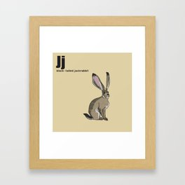 Black-Tailed Jackrabbit Framed Art Print