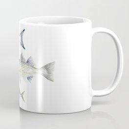 New England Fish Trio Coffee Mug