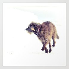 Snowy Puppy Art Print