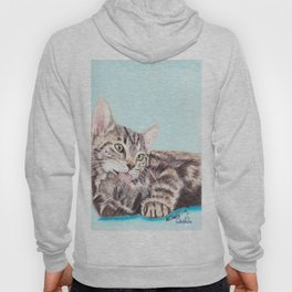 Original Pet Animals Artwork (non-profit) - Tabby Kitten Cat Pastel Hoody