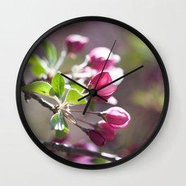 Pink Crabapple Buds Wall Clock