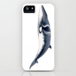 Baby Minke whale iPhone Case