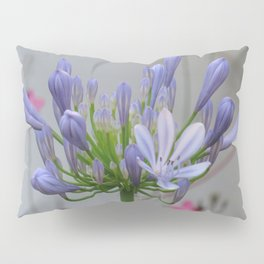 Agapanthus Pillow Sham