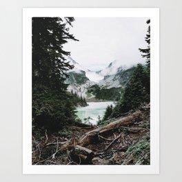Into the Wild VI / Washington Art Print