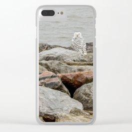 Snowy Owl by Teresa Thompson Clear iPhone Case
