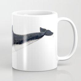Harbour porpoise (Phocoena phocoena) Coffee Mug