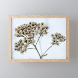White on White Framed Mini Art Print