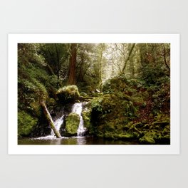 Cataract Creek Falls Art Print