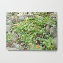 Jardín Botánico de Quito, Veinte y Nueve Metal Print
