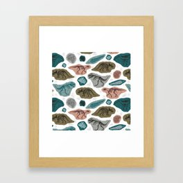 Fossilized Framed Art Print