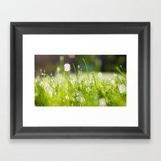 grassy morning Framed Art Print